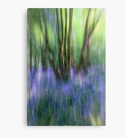 Essence Of Bluebells Canvas Print