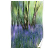 Essence Of Bluebells Poster