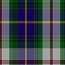 00561 Californian Macleod Clan Tartan Fabric Print Iphone Case by Detnecs2013
