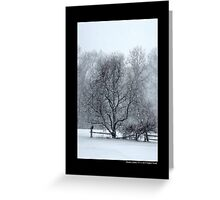 Tree Withstanding A Snowstorm - Middle Island, New York Greeting Card