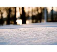 Macro Snow Photographic Print