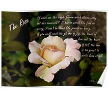 Peach Rose With Poem Poster