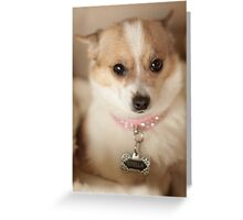 Stella's Bling ~ Greeting Card