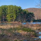 Lake Nawahunta In March by JHRphotoART