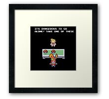 Its Dangerous to go Alone (Charmander) Framed Print