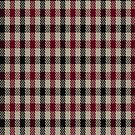 00581 Dacre Estate Check District Tartan Fabric Print Iphone Case by Detnecs2013
