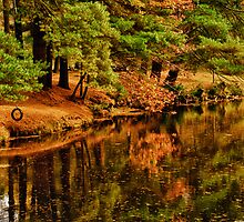 Fall at Blue Jay Creek  by Heather  Andrews Kosinski