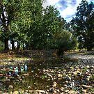 Mountain Creek NSW Australia No 2 by Kym Bradley