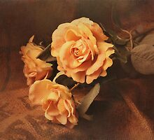 Yellow roses by Katharina Hilmersson