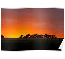 Sunset Murrumbateman  Rural NSW  Australia  Poster