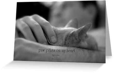paw prints on my heart © 2011 patricia vannucci  by PERUGINA