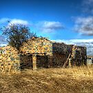 Ruins of an old cottage Boorowa  NSW  by Kym Bradley