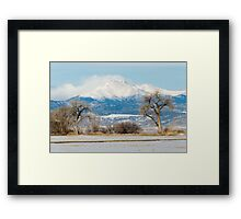 The Gentle Giants Framed Print