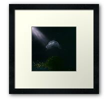 Jelly Fish Dreaming Framed Print