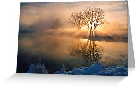 Good Morning Starshine by Gregory J Summers
