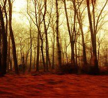 Explosion of Trees by ShadesOfLife