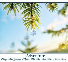 Spring Drop and Adventure by jkgiarratano