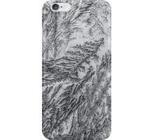 Frost 2 B&W iPhone Case/Skin