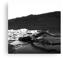Birth of a River I Canvas Print