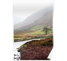 Borrowdale Valley! The Lakes District - England! Poster