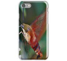 Hummingbird Moth iPhone Case/Skin