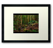 Il caos della natura Framed Print