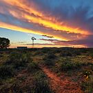 Epic Karoo Windmill by Rob  Southey