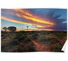 Epic Karoo Windmill Poster
