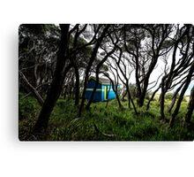 Blue beach box Canvas Print