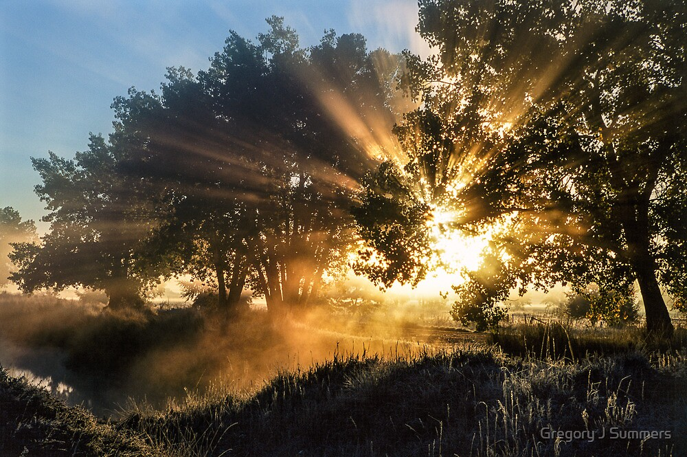 Blinded By The Light by Gregory J Summers