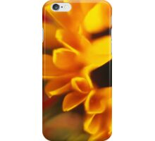 Sunflower! iPhone Case/Skin