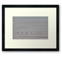 "Pelican ""Follow The Leader"" Over the Ocean Framed Print"