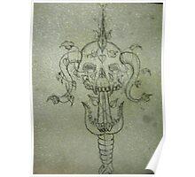 Sverd og Skull Poster