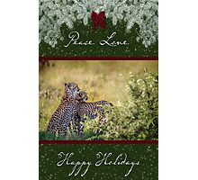 Cheetah Mother and Son for the Holidays Photographic Print