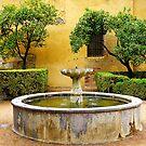Garden - The Alcazar in Cordoba, Spain by kkmarais