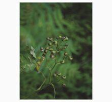green berries One Piece - Short Sleeve