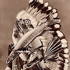 River Chief. by nawroski .