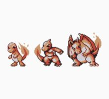 Charmander evolution  by kyokenbyo