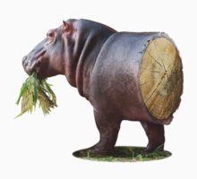 Log Hippo Kids Clothes