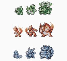 Starter Pokemon evolutions by kyokenbyo
