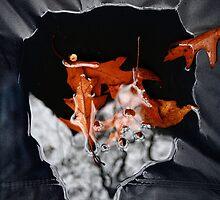 Wet Leaves 2 by Peter Baglia