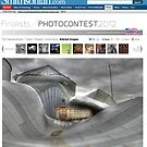Smithsonian Contest Finalist! by Tim Wright