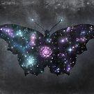 Cosmic Butterfly  by Terry  Fan