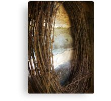 Barbed Wire Rusted Canvas Print