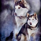 Husky - Night Spirit by Carol  Cavalaris