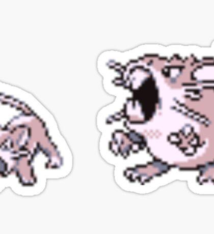 Rattata evolution  Sticker
