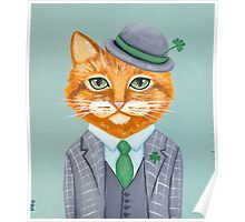 Tiarnan the Tabby Cat Poster