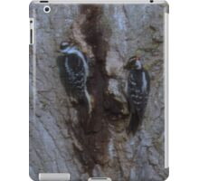 These Two Woodpeckers Pentax (X-5) 16 Megapixels iPad Case/Skin