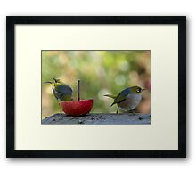 Partners in crime.......thief and lookout........! Framed Print