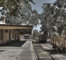 Healsville Railway Station by Colin  Ewington